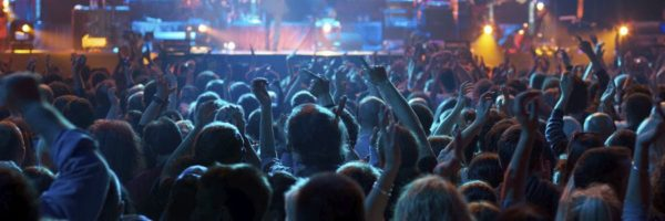 Crowd Risk Analysis and Crowd Safety